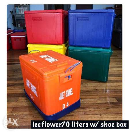Plastic fish box with shoe box