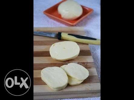 vegetable rennet organic cheese making cheese salt